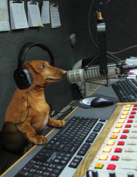 The Radio Man is Speaking